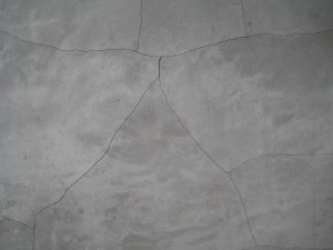 Background (cracked cement, Greenwich, CT) (Photo: Alan Liu)
