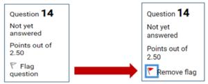 "GauchoSpace exam interface ""flag question"" feature"